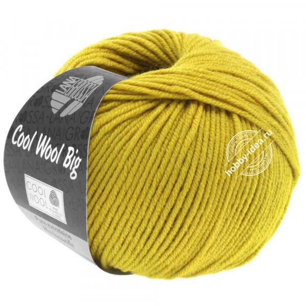 Купить пряжу Lana Grossa Cool Wool Big 973
